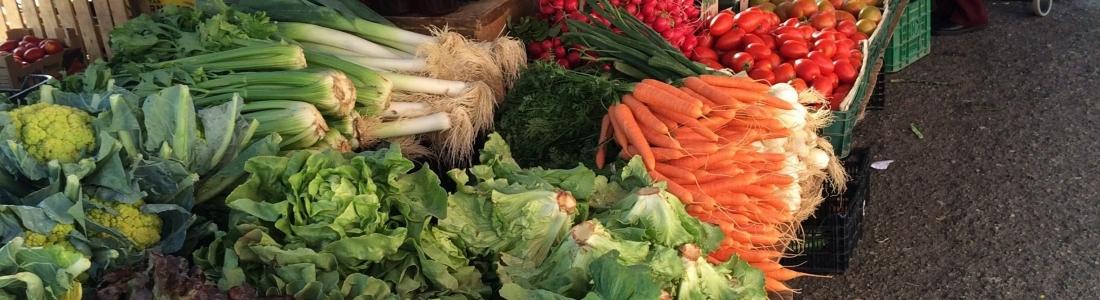 Darmen, microbioom en gezondheid